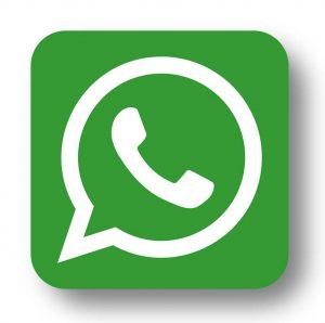 WhatsApp us today